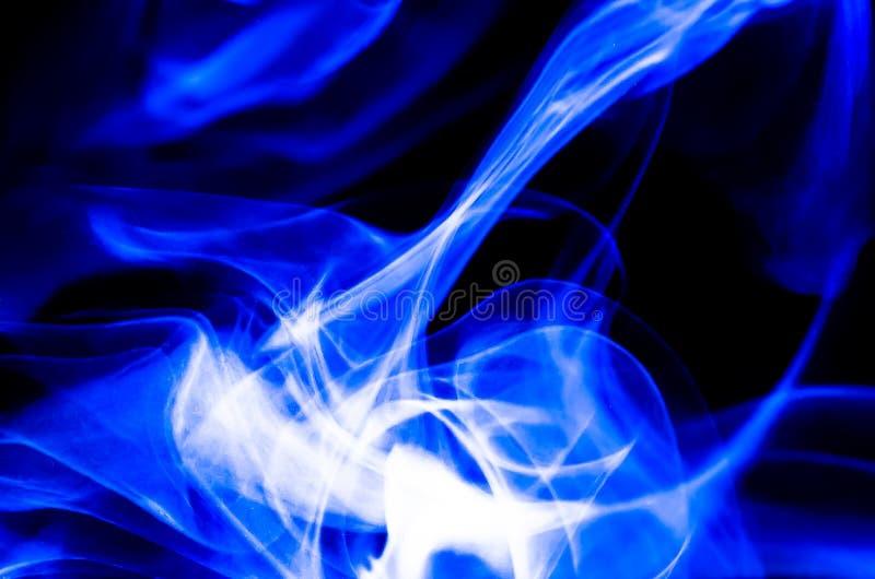 Naturabstrakt begrepp: Den delikata skönheten och elegansen av ett test av blåttrök arkivfoton