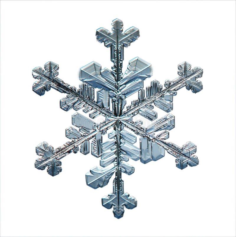 Naturais naturais do macro do floco de neve