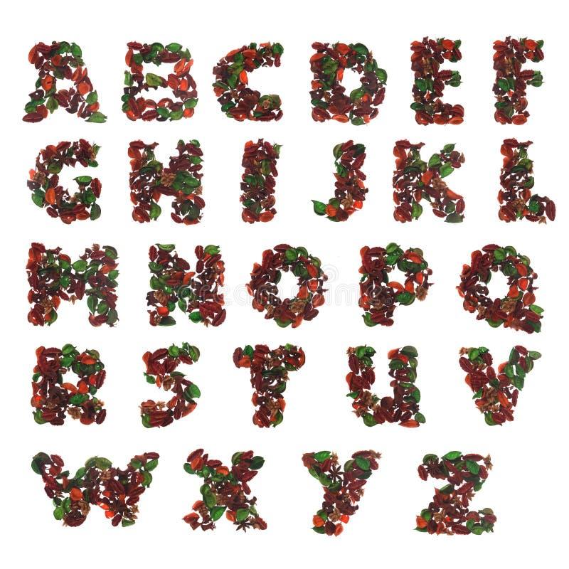 Natural alphabet. White background isolated royalty free stock photos