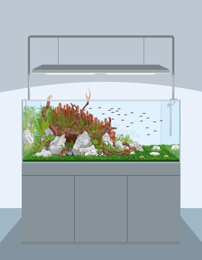 Download Home Aquarium Stock Vector. Illustration Of Equipment   81292873