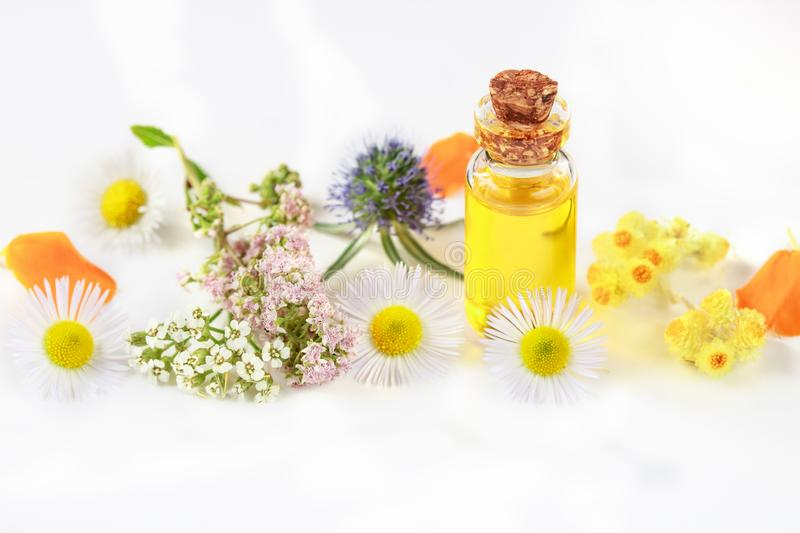 Natural aromatherapy essential oil for aromatherapy and ayurvedic aromatherapy herbs for body and face. Natural essential oil for aromatherapy and ayurvedic royalty free stock photography