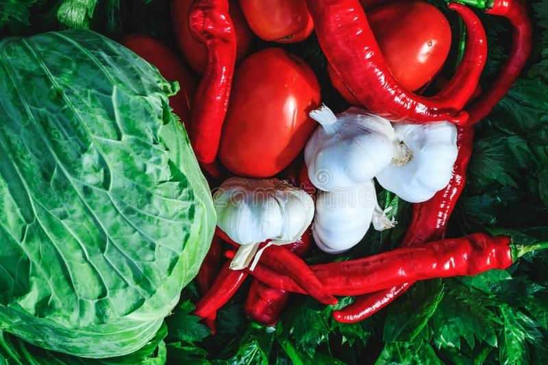 Natural assortment of cabbage, red tomatoes, hot peppers, garlic and celery. Large variety of vegetables prepared for pickles. Mixed organic preparations for stock image