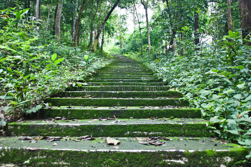 Download Natural attractions stock photo. Image of green, concrete - 21616354