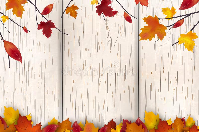 Natural Autumn background design. Autumn leaf fall, autumnal falling leaves on white wooden background. Vector autumnal. Foliage fall of maple leaves stock illustration