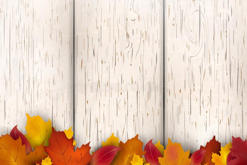Natural Autumn background design. Autumn leaf fall, autumnal falling leaves on white wooden background. Vector autumnal royalty free illustration