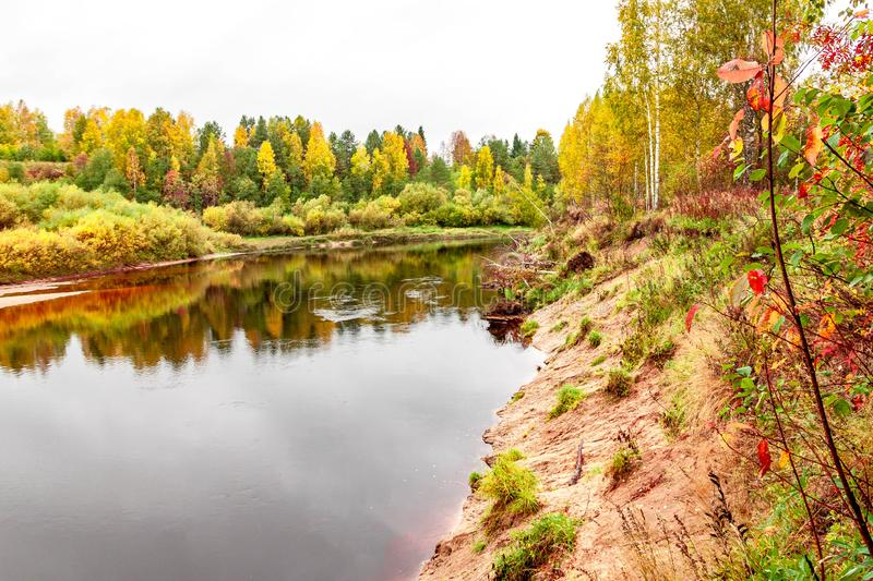 Natural autumn landscape with river shore and green, yellow and red leaves trees forest view on fall background royalty free stock photography