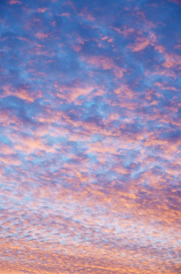 Bright red blue cloudy sky at sunrise. Natural background of bright red blue cloudy sky at sunrise in october. Many curly clouds stock photo