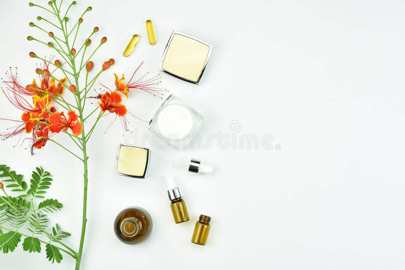 Natural background with copy space for beauty product. Organic beauty cosmetics product concept royalty free stock photography