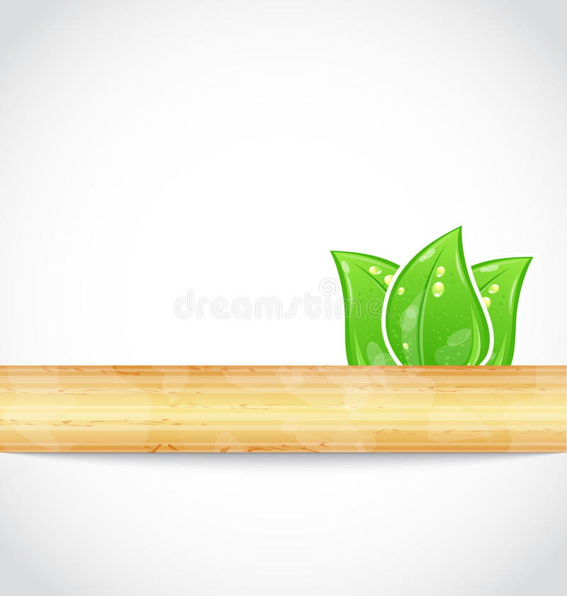 Download Natural Background With Eco Green Leaves And Wood Stock Vector - Image: 25509219