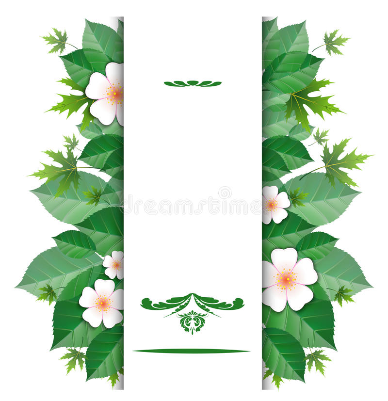 Download Natural Background With A Place For An Inscription Stock Vector - Illustration: 38789219