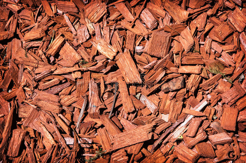 natural background red mulch close up photo 71613480