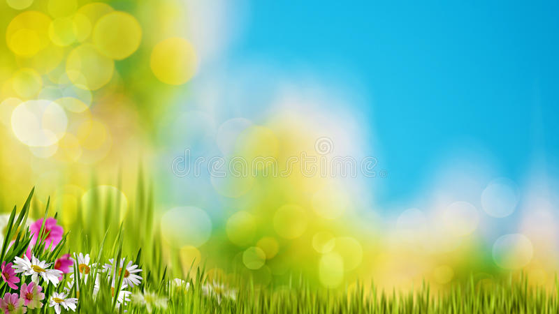 Natural backgrounds with green foliage royalty free stock images