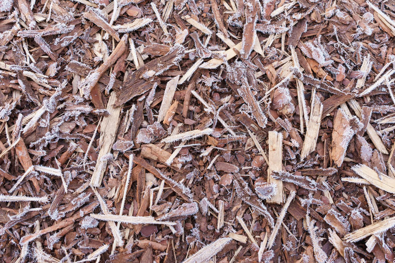 Natural bark covered by morning frost. Natural bark used as a soil covered by rime, from above view stock photos