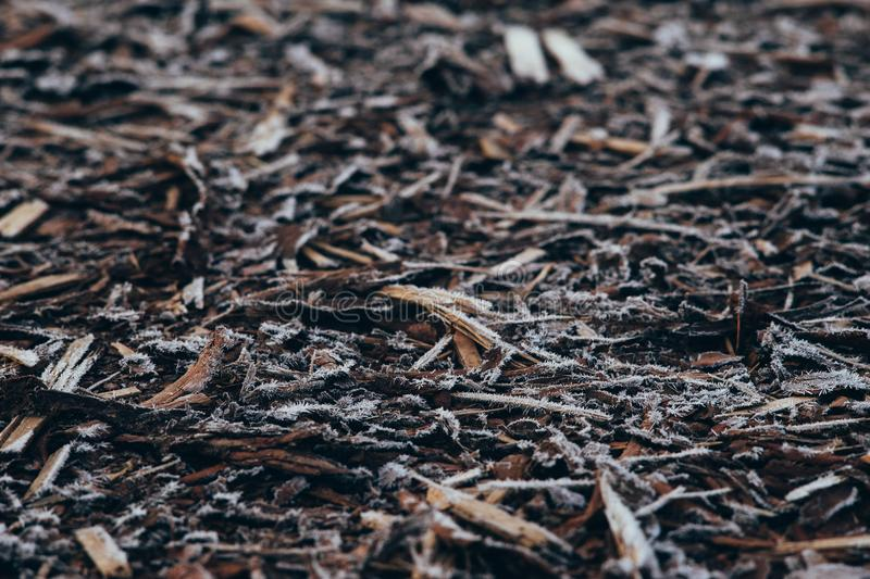 Natural bark covered by morning frost. Natural bark used as a soil covered by morning frost, selective focus stock photos