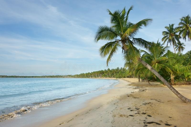 Natural beach, Dominican Republic stock images