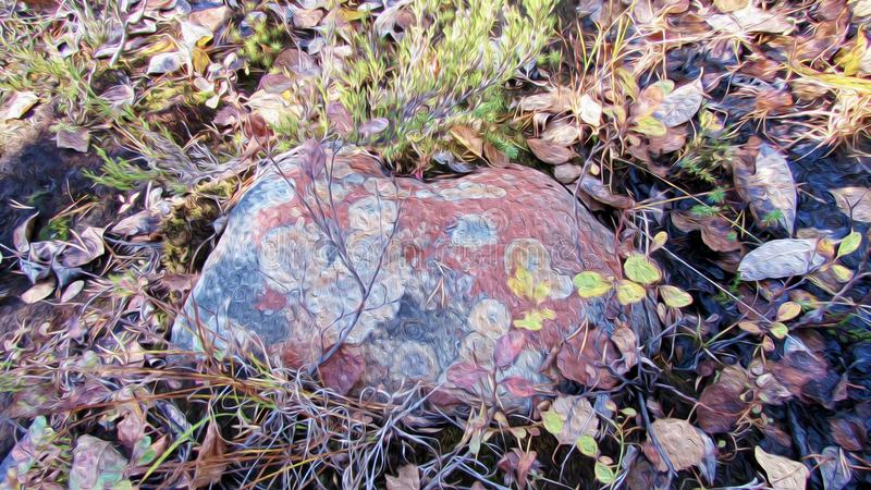 Spotted colorful stone lying in moss and autumn withered foliage, texture of oil painting. Natural beauty of colored stone in fall forest. Spotted rock lying in vector illustration