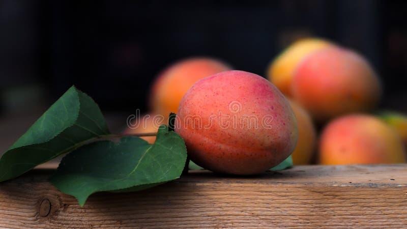 Natural biológico de la licencia de la fruta del albaricoque en la madera imagenes de archivo