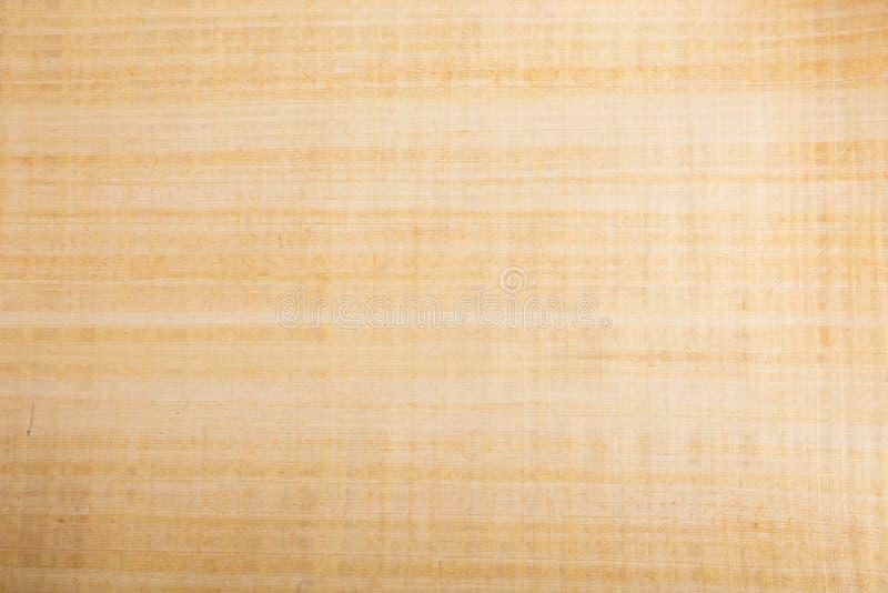 Natural Blank Papyrus Texture Stock Photo - Image of craft, closeup: 36805108