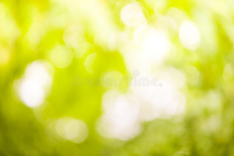 Download Natural Blurred Background Full Stock Photo - Image of bright, natural: 26005046
