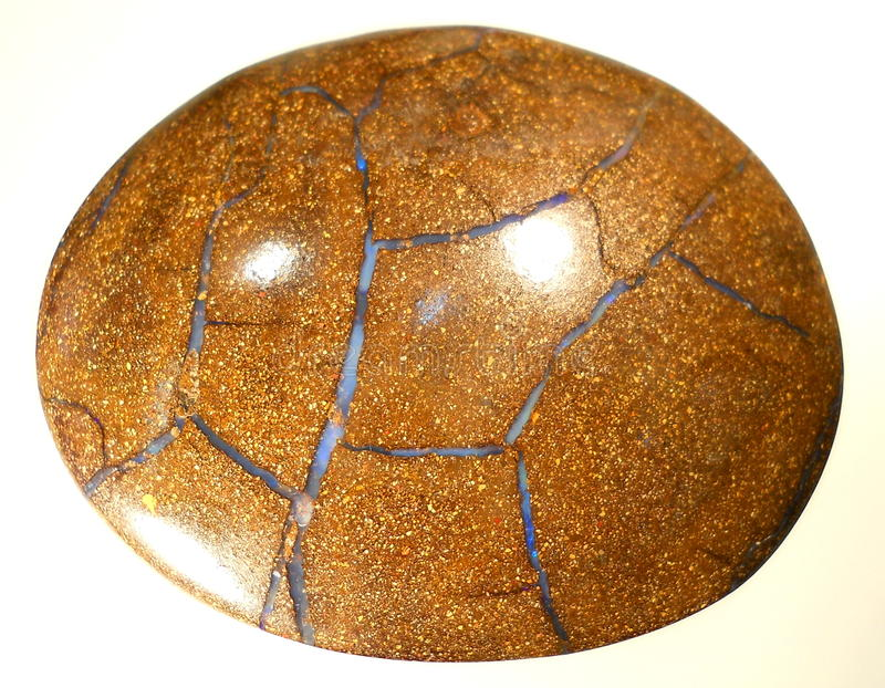 Natural Boulder opal. Boulder opal - brown natural stone caboshone with blue opal isolated stock photography