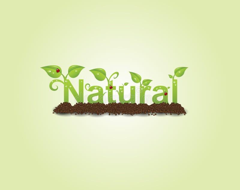 Natural caption vector illustration