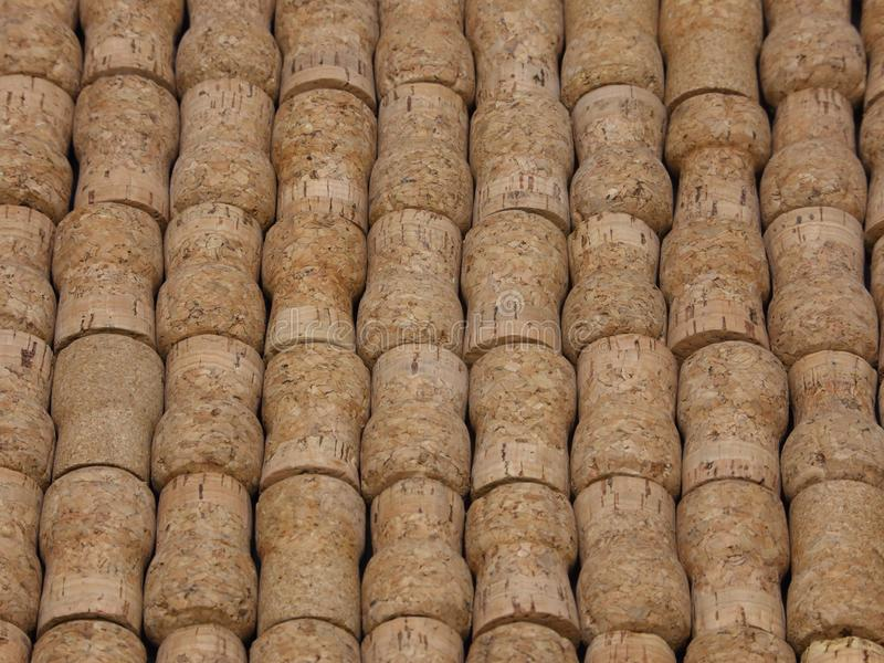 Natural Champagne Corks Arranged in an Angled View. Many champagne or sparkling wine corks are shown up close, arranged on display in an angled view royalty free stock images
