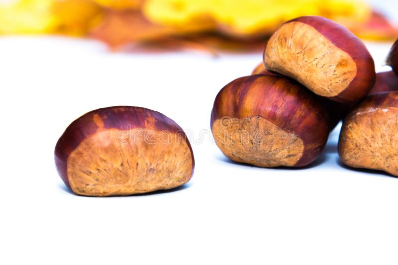 Natural chestnuts isolated. In white stock photography
