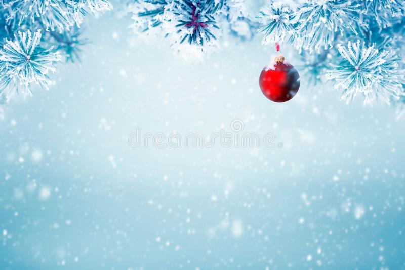 Natural Christmas background falling snow royalty free stock images