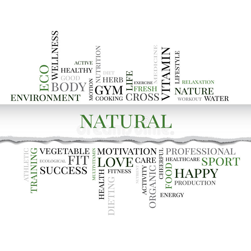 NATURAL concept related words in tag cloud. Vector. NATURAL concept related words in tag cloud with different association organic and healthy terms. The effect royalty free illustration