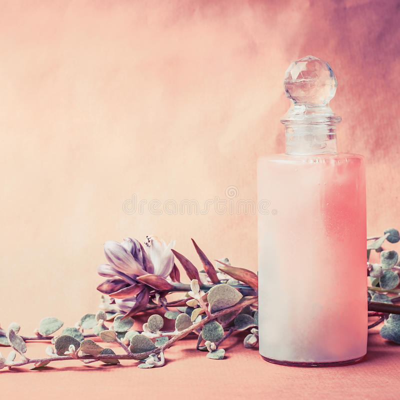 Natural cosmetic product in bottle with herbs and flowers on pink background, front view, square, copy space. Healthy skin or body royalty free stock images