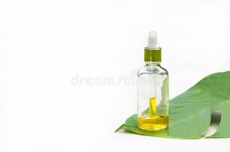 Natural cosmetic product in a glass bottle. organic extract, serum, essential massage oil for skin care on a green leaf stock images