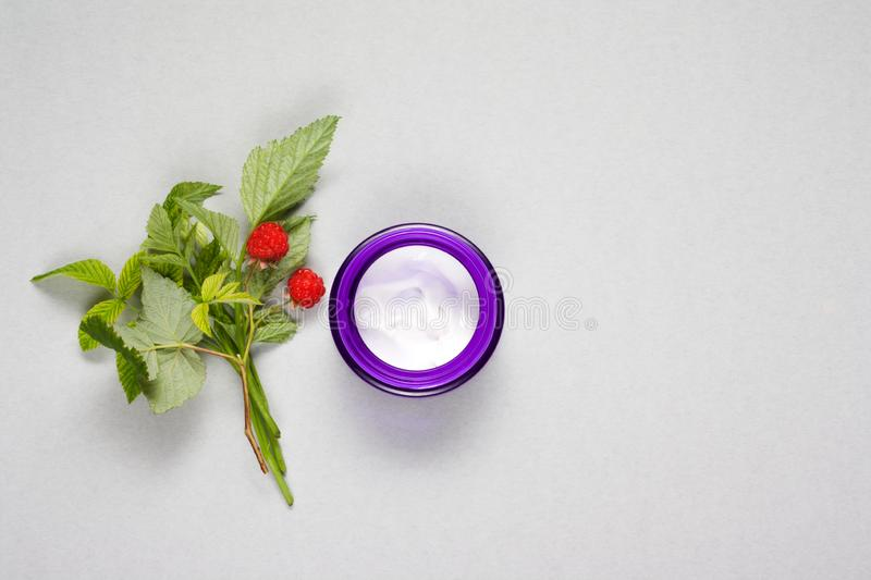 Natural cosmetic white cream in a purple container with green sprigs and red berries of raspberry royalty free stock images