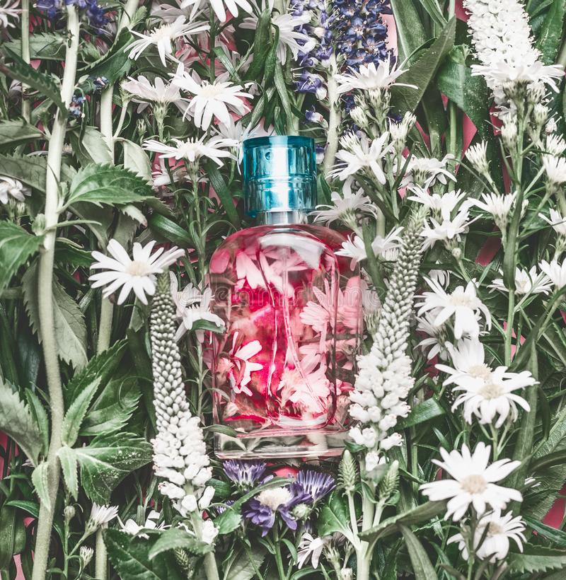 Natural cosmetics glass bottle with pink liquid: tonic , makeup fixing mist or perfume on herbal leaves and wild flowers stock photo