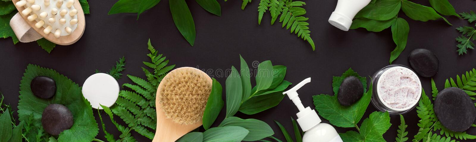 Natural cosmetics and leaves. Natural cosmetics and green leaves on black background, banner. Natural organic skincare, bio research and healthy lifestyle royalty free stock photo