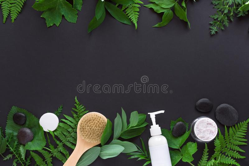 Natural cosmetics and leaves. Natural cosmetics and green leaves on black background, copy space. Natural organic skincare, bio research and healthy lifestyle stock image