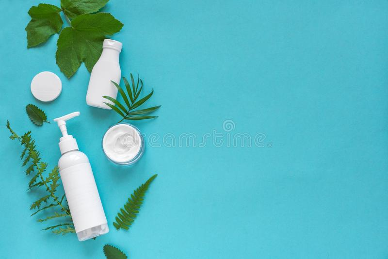 Natural cosmetics and leaves royalty free stock photos