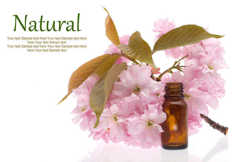 Natural cosmetics, remedies royalty free stock photos