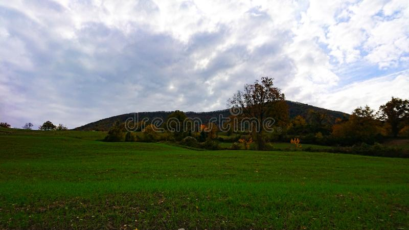 Natural Country Landscape Fields, Trees and Mountains royalty free stock photography