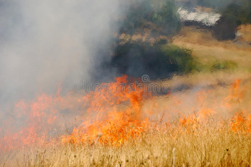 Download Natural Cover Fire Royalty Free Stock Photos - Image: 24566158
