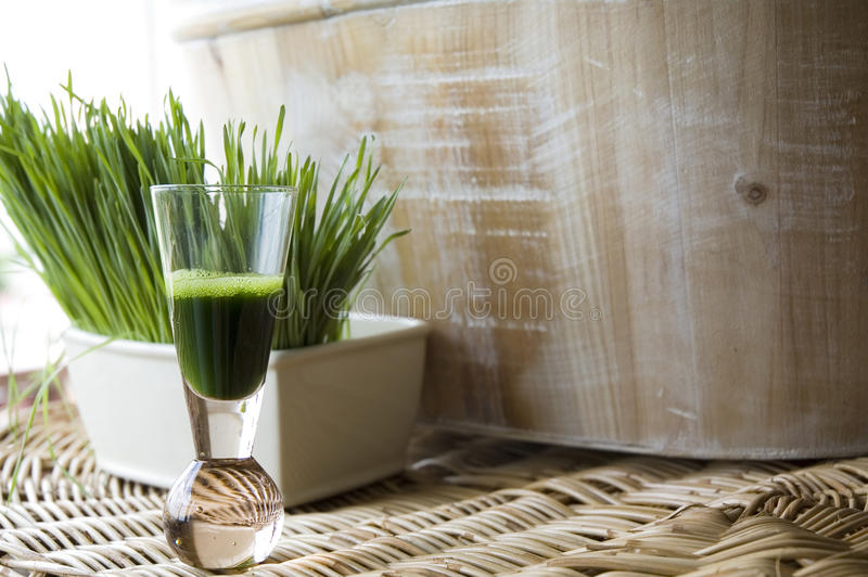 Download Natural wheatgrass shot stock image. Image of drink, plant - 25315591
