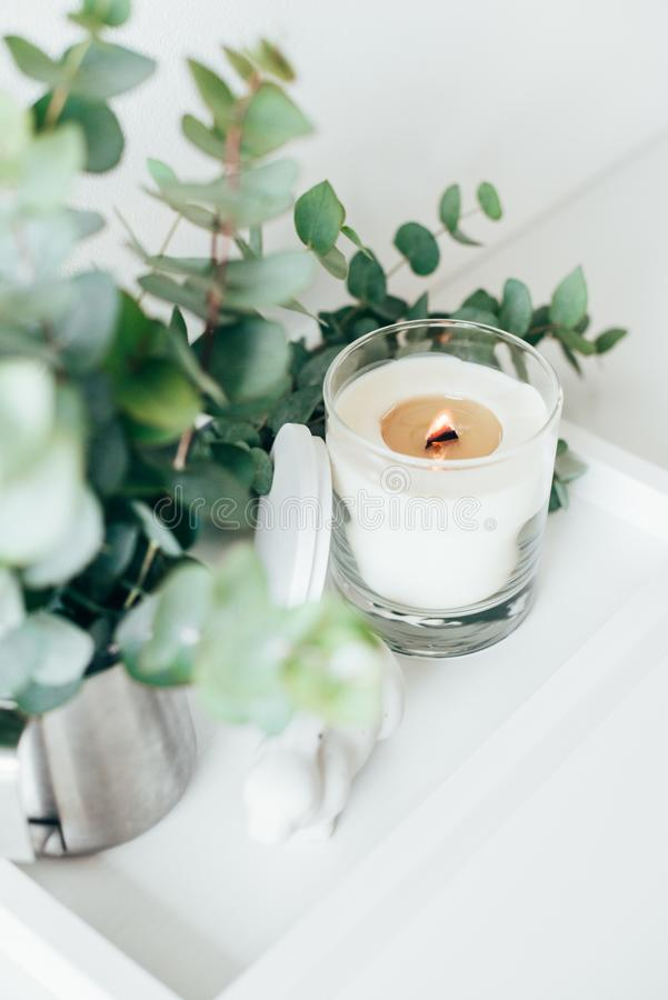 Natural eco home decor with green leaves and burning candle on t. Ray, boho interior decorations stock images
