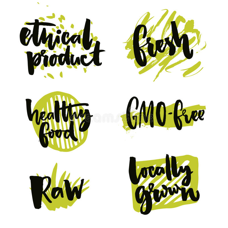 Natural elements for organic food and beverage. Gmo free and locally grown signs. Rough typography on green splotches royalty free illustration