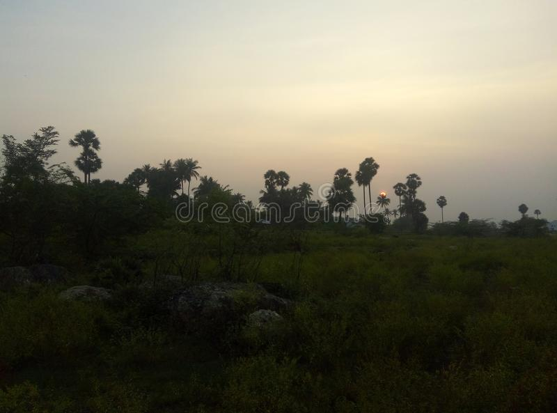 Natural. At evening time my click stock image
