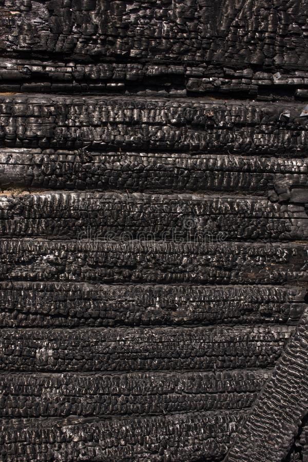 Free Natural Fire Ashes With Dark Grey Black Coals Texture. It Is A Flammable Black Hard Rock. Copyspace Royalty Free Stock Photography - 155335467