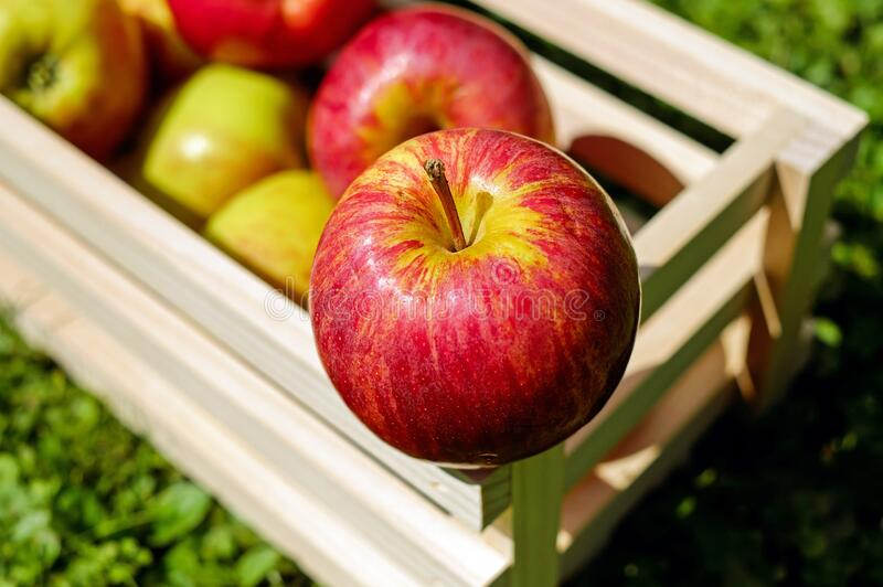 Natural Foods, Fruit, Apple, Local Food stock image