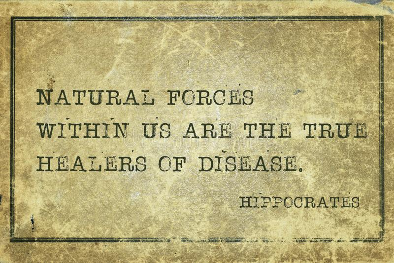 Natural forces Hippocrates. Natural forces within us are the true healers of disease - famous ancient Greek physician Hippocrates quote printed on grunge vintage stock photo