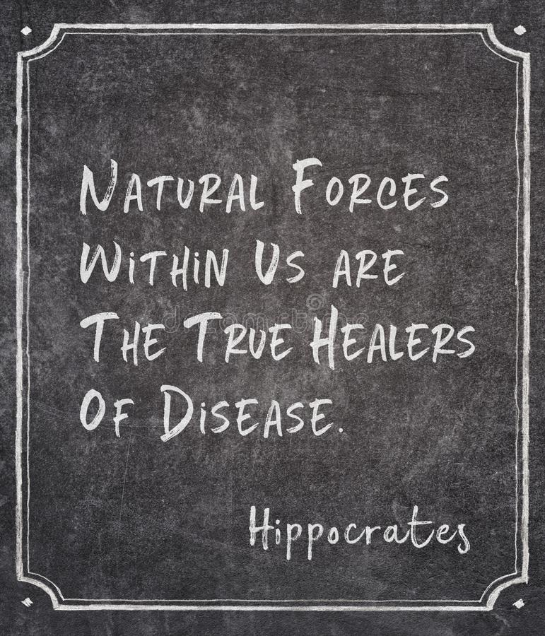 Natural forces Hippocrates. Natural forces within us are the true healers of disease - famous ancient Greek physician Hippocrates quote written on framed royalty free stock photo