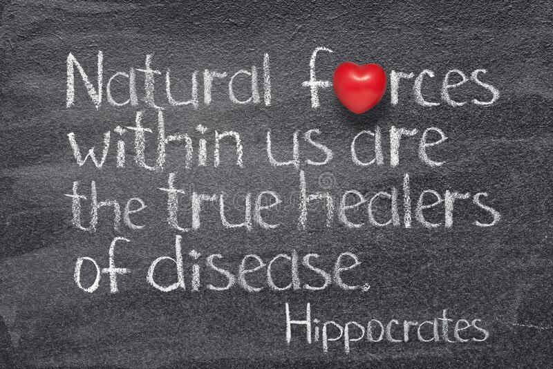 Natural forces Hippocrates. Natural forces within us are the true healers of disease - ancient Greek physician Hippocrates quote written on chalkboard with red royalty free stock photo