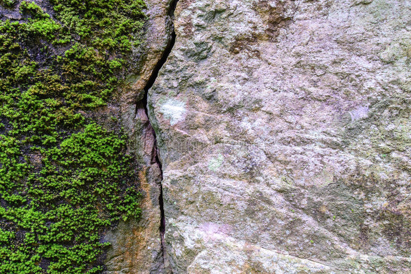 Natural fractured stone and moss in forest.  royalty free stock photography