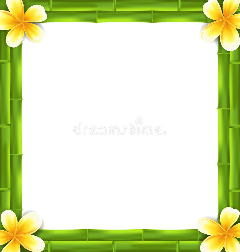 Natural Frame Made Bamboo And Frangipani Flowers, Copy Space For ...